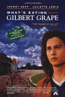 What's Eating Gilbert Grape (1993) รักแท้เลือกไม่ได้